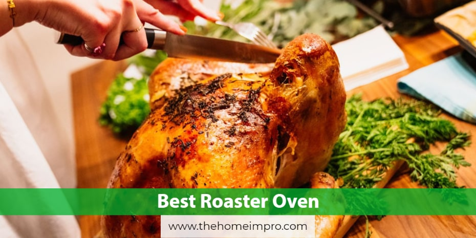 6 Best Roaster Oven Reviews for 2020 | A Roasting Friend in Need